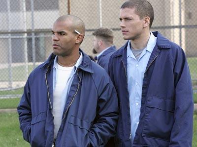 Sucre n Scofield